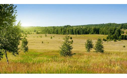 Серия Панорамы. Русские просторы (РN0033)