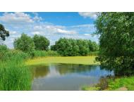 Серия Панорамы. Лесное озеро (РN0035)